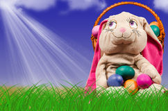 Easter eggs in green grass. Festive decoration. Stock Images