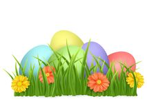 Easter eggs in green grass with flowers isolated on white background. Vector image. Easter eggs in green grass with flowers isolated on white background. Vector Stock Photo