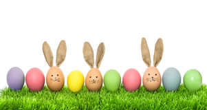 Easter eggs in green grass Holidays background Royalty Free Stock Photo