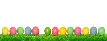 Easter eggs in green grass. Holidays banner Royalty Free Stock Photography