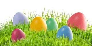 Easter eggs in green grass isolated royalty free stock images