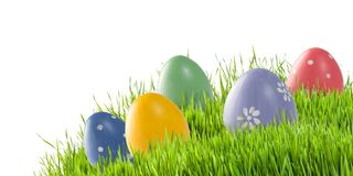 Easter eggs in green grass isolated royalty free stock photos
