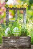 Easter eggs on green grass Stock Photography