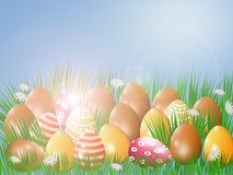 Easter eggs in green grass. Easter eggs in green grass in the sun Stock Photos