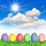 Easter eggs in green grass with sunny blue sky Royalty Free Stock Photography