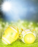 Easter eggs, green grass and sunny blue sky Royalty Free Stock Photography