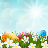 Easter eggs on green grass. And sunny sky backbround Stock Photo