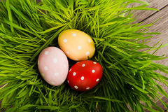 Easter eggs on green grass on table Stock Images