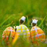Easter Eggs In Green Grass Stock Photos