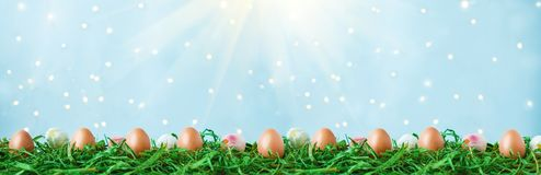 Easter eggs on green grass, tulips with bokeh and sunlight on a blue background Easter concept stock photos