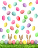 Easter eggs in green grass on white background Stock Photo