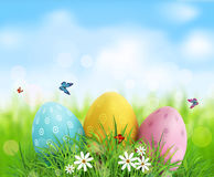 Easter eggs in green grass with white flowers, butterflies. Vector background. Easter eggs in green grass with white flowers, butterflies on blue, blurred Stock Photography