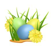 Easter eggs in green grass with yellow flowers isolated on white background. Vector image. royalty free illustration