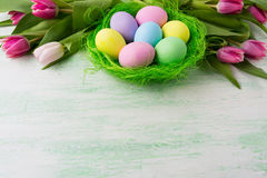 Easter eggs in green nest background Stock Photos