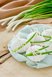Easter Eggs and green onions Stock Photos