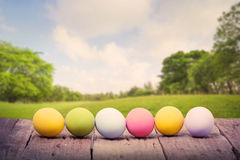 Easter eggs on green park Royalty Free Stock Photo