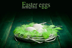 Easter eggs and green plumes Stock Image
