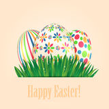 Easter eggs  and green spring grass Stock Photography