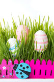 Easter eggs and green wheat plant Stock Photography