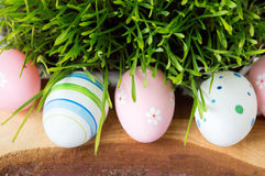 Easter eggs and green wheat plant Stock Photos