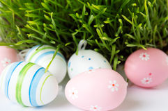 Easter eggs and green wheat plant Stock Images