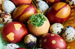 Easter eggs with greenery. Brown, orange, Easter eggs with greenery Royalty Free Stock Photography