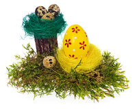 Easter eggs hand painted multicolored in bird nest, forest moss, Stock Photo