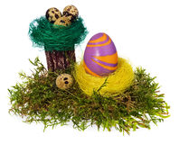 Easter eggs hand painted multicolored in bird nest, forest moss, Royalty Free Stock Photo