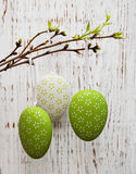 Easter eggs hanging on a branch Stock Photos