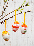 Easter eggs hanging on a branch Stock Images