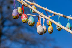 Easter eggs hanging on a branch Royalty Free Stock Photo