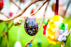 Easter eggs hanging from a metal sculpture. Ukrainian pysanky eggs with traditional design on them hanging from a metal sculpture Stock Photography