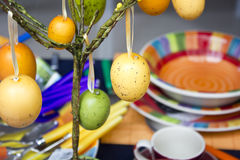 Easter eggs hanging on the table Royalty Free Stock Photo