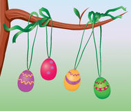 Easter eggs hanging on a tree branch Royalty Free Stock Images