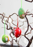Easter eggs hanging on the tree Royalty Free Stock Image