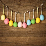 Easter eggs hanging Stock Image