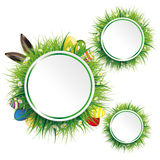 Easter Eggs Hare Ears Grass 3 Circles Stock Images