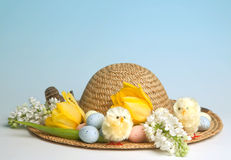 Easter eggs hat Royalty Free Stock Images