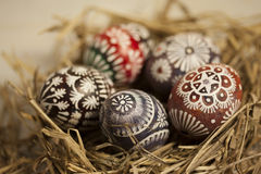 Easter eggs in hay nest Stock Image