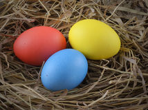 Easter eggs hay Royalty Free Stock Image