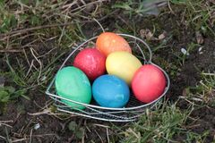 Easter Eggs in Heartform on a Meadow Royalty Free Stock Image