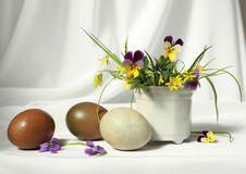 Easter eggs with heartsease. Easter white composition with heartsease Royalty Free Stock Photo