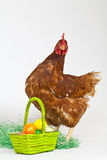 Easter eggs with a hen Stock Photo