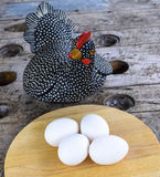 Easter eggs and the hen. Stock Image