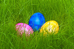 Easter eggs hidden in the grass Stock Photography