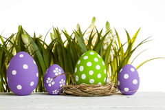 Easter eggs hidden in the grass Royalty Free Stock Photography