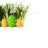 Easter eggs hidden in the grass Royalty Free Stock Images