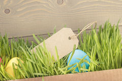 Easter eggs hiden in grass border composition Royalty Free Stock Photo
