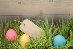 Easter eggs hiden in grass border composition Stock Image