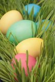 Easter eggs hiden in grass close up photo Royalty Free Stock Photography